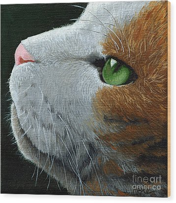 Max - Neighbor Cat Painting Wood Print by Linda Apple