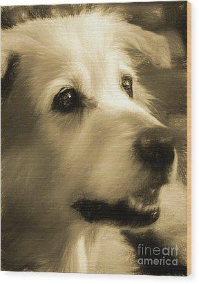 Max Wood Print
