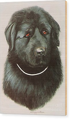 Maximillan And His Diamond Collar. Wood Print by DiDi Higginbotham