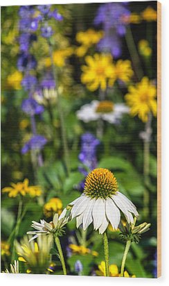 Wood Print featuring the photograph May Flowers by Steven Sparks