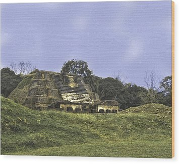 Wood Print featuring the photograph Mayan Ruins In Belize by Linda Constant