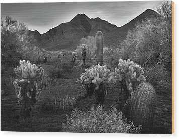 Wood Print featuring the photograph Mcdowell Mountains Black And White by Dave Dilli