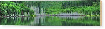 Mcguire Reservoir P Wood Print by Jerry Sodorff