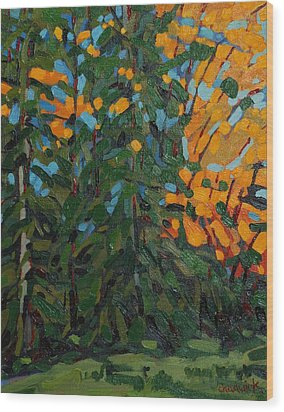 Mcmichael Forest Wall Wood Print