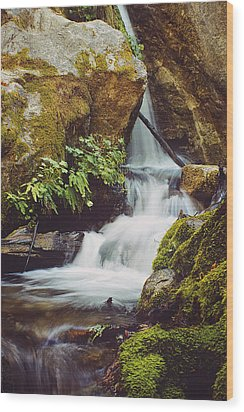 Mcway Creek Falls 1 Wood Print