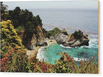 Mcway Falls 2 Wood Print by Judy Vincent