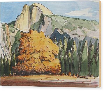 Meadow At Half Dome Wood Print