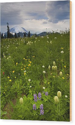 Meadow Beneath The Storm Wood Print by Mike  Dawson