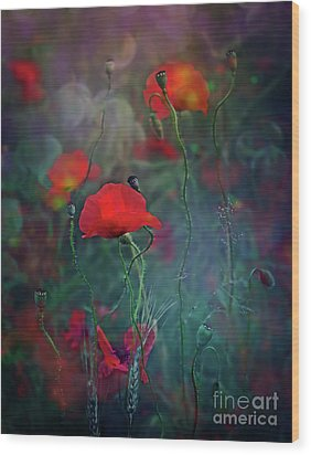 Meadow In Another Dimension Wood Print by Agnieszka Mlicka