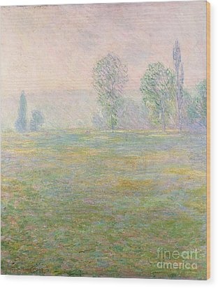 Meadows In Giverny Wood Print by Claude Monet