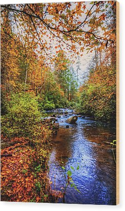 Wood Print featuring the photograph Meandering In The Mountains by Debra and Dave Vanderlaan