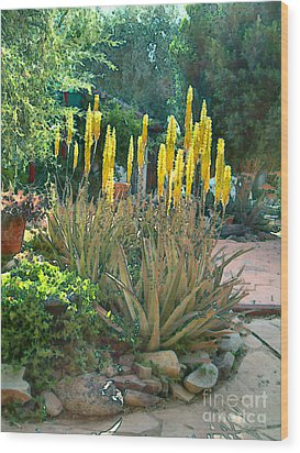 Medicine Aloes In Bloom Wood Print