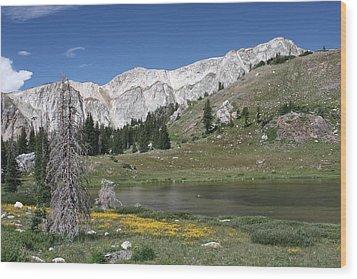 Medicine Bow Peak Wood Print
