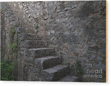 Medieval Wall Staircase Wood Print by Angelo DeVal