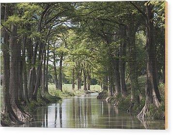 Medina River Wood Print