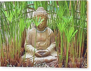 Meditation Wood Print by Ray Shrewsberry