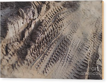 Medium Cu Motorcycle And Car Tracks In Mud Wood Print by Jason Rosette