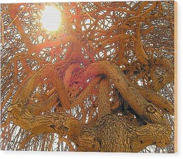 Medusa Arboraceous Wood Print by Robert  Collier