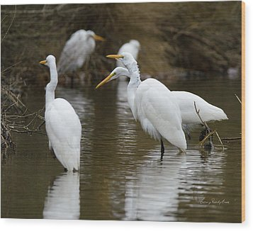 Meeting Of The Egrets Wood Print by George Randy Bass