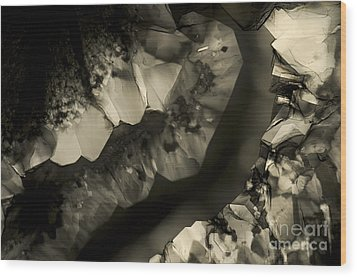 Wood Print featuring the photograph Meeting by Olimpia - Hinamatsuri Barbu