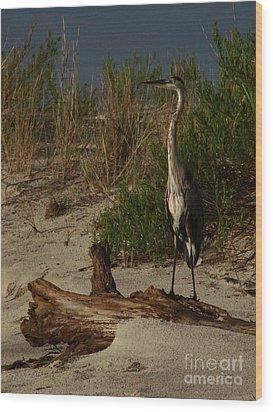 Mein Heron Wood Print by Mark Holbrook