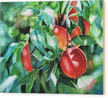 Melocotones- Peaches Wood Print by Maria Balcells