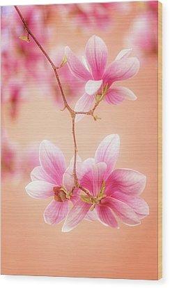 Melodies Of Spring  Wood Print