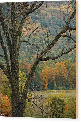 Melody Of Autumn II Wood Print by Debra     Vatalaro