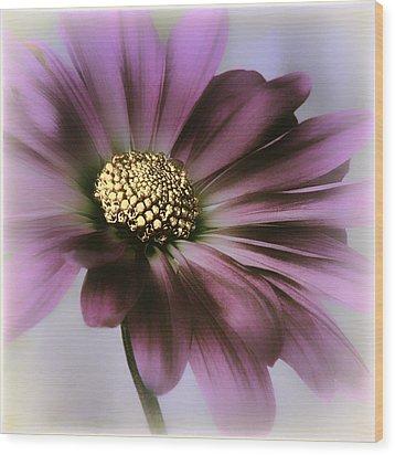 Wood Print featuring the photograph Memories Of Spring by Darlene Kwiatkowski