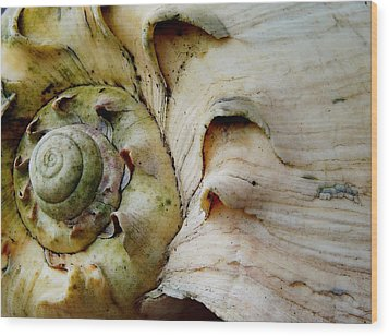Memories Of Waves Wood Print
