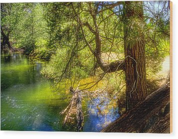 Merced River2 Wood Print by Michael Cleere