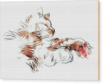 Merph Chillin' - Pet Portrait Wood Print by Carolyn Weltman