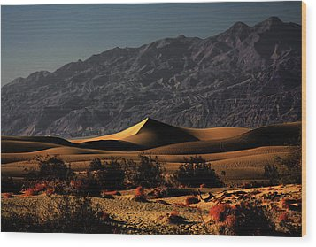 Mesquite Flat Sand Dunes Death Valley - Spectacularly Abstract Wood Print by Christine Till