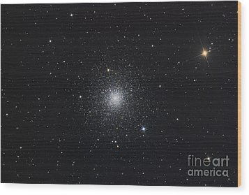 Messier 3, A Globular Cluster Wood Print by Roth Ritter
