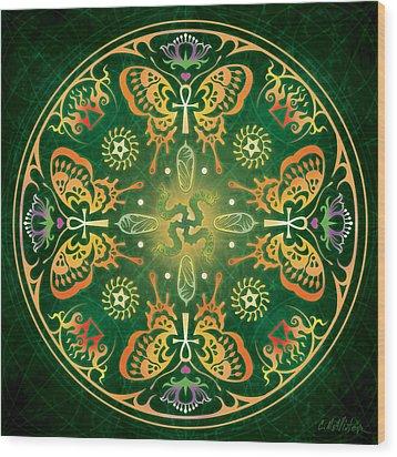 Metamorphosis Mandala Wood Print by Cristina McAllister