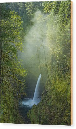 Wood Print featuring the photograph Metlako Falls Dressed In Fog by Patricia Davidson