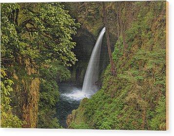 Metlako Falls In Spring Wood Print by David Gn