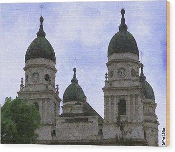 Metropolitan Cathedral Wood Print by Jeffrey Kolker