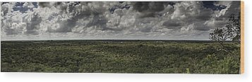 Mexican Jungle Panoramic Wood Print by Jason Moynihan