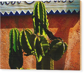 Mexican Style  Wood Print by Susanne Van Hulst