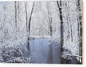 Michgan Winter 10 Wood Print by Scott Hovind