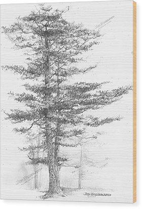 Michigan-eastern White Pine Wood Print