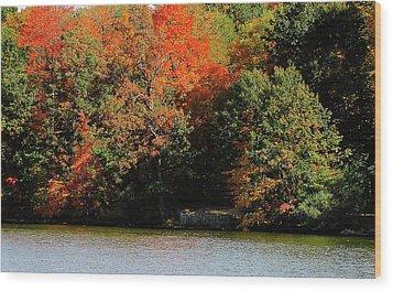 Michigan Fall Colors 5  Wood Print by Scott Hovind