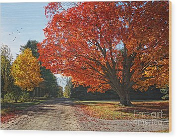 Michigan Spellbound Wood Print