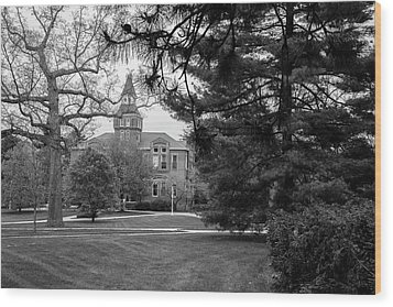 Michigan State University Campus Black And White  Wood Print