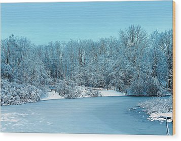 Michigan Winter 6 Wood Print by Scott Hovind