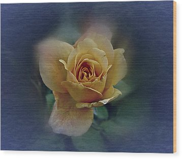 Wood Print featuring the photograph Mid September Rose by Richard Cummings