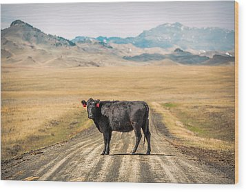 Middle Of The Road Wood Print by Todd Klassy