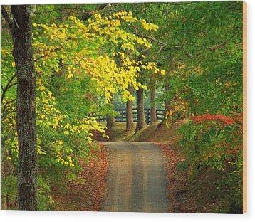 Middleburg Road Wood Print