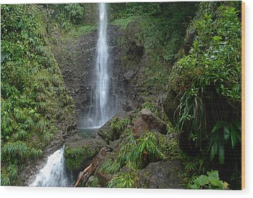 Middleham Waterfall In Dominica Wood Print by Tropical Ties Dominica